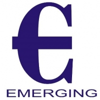 Emerging Consultancy Services