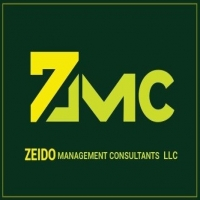 Zeido Management Consultants LLC