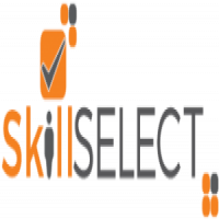 Skill Select Immigration Services