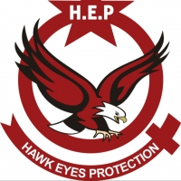 Hawk Eyes Protection